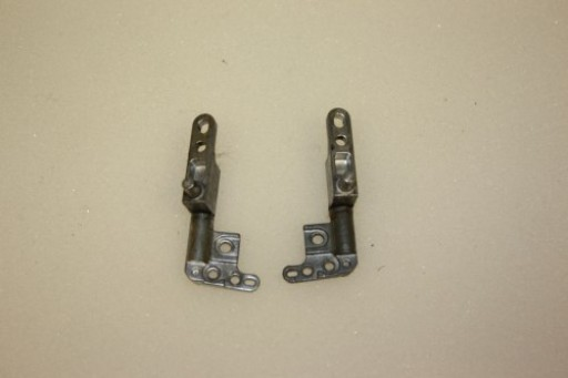 Dell Latitude D610 Hinge Set