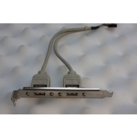 Dual USB PCI Bracket Cable